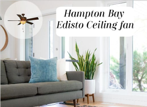 Edisto Ceiling Fan